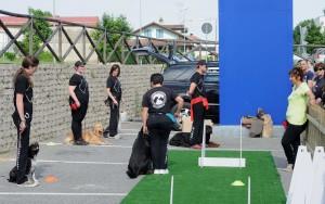 cropped-addestramento-cani-torino.jpg