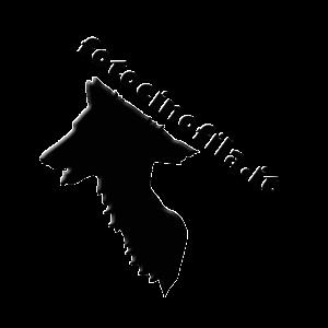 logo fotocinofila grande